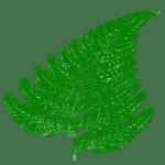 Revue de presse écologique